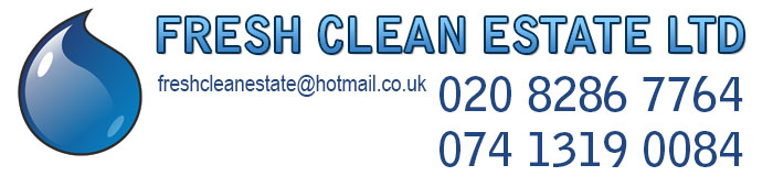 Carpet cleaning in London, Spring cleaning, After tenancy cleaning, Windows cleaning, Car upholstery cleanng, Domestic cleaning,